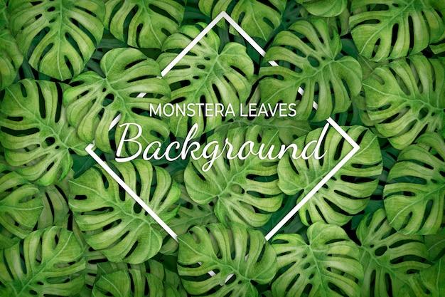 菱形と熱帯の葉の背景