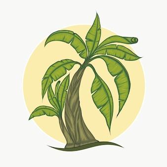 バナナの木のクリップアート