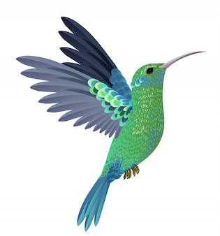 美しい飛ぶハチドリ。デザイン要素。バナー、ポスター、チラシ、パンフレット