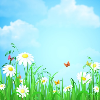 Предпосылка лета весны природы с иллюстрацией голубого неба бабочек стоцвета травы цветка.