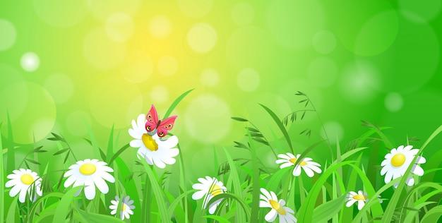 Бабочка сидит на цветке ромашки на зеленой лужайке. природа весна лето векторные иллюстрации.