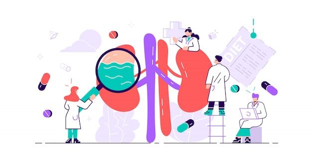 腎臓病の概念。抽象的な解剖学的および医学的な内臓疾患