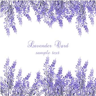 ラベンダー に関するベクター画像写真素材psdファイル 無料