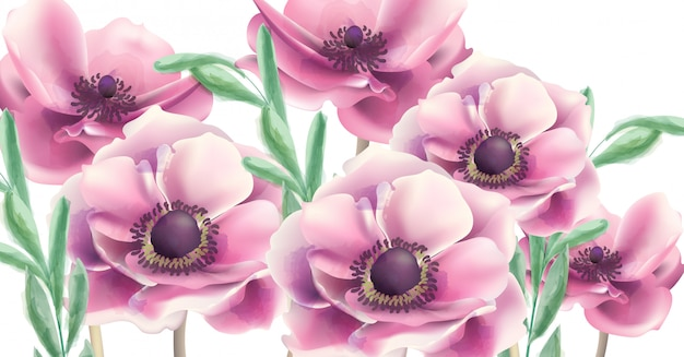 夏の花の水彩画