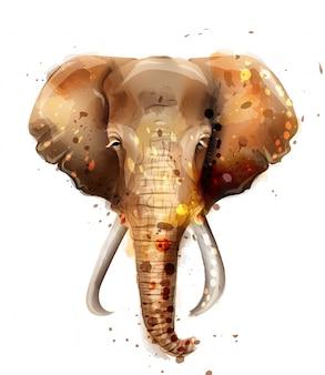 Слон акварель