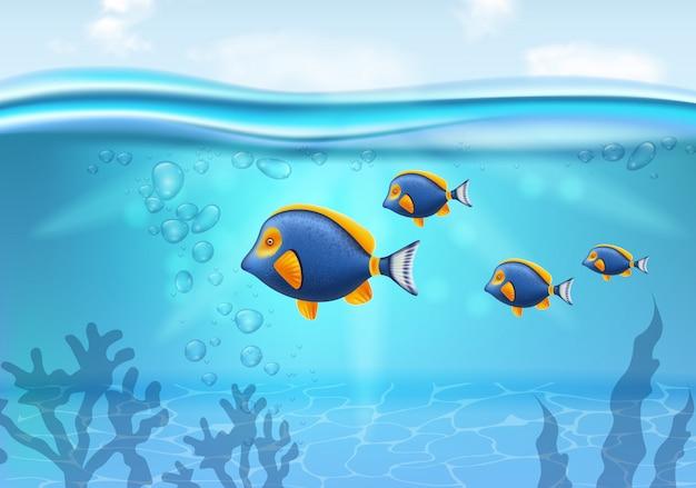 Золотая рыбка под водой