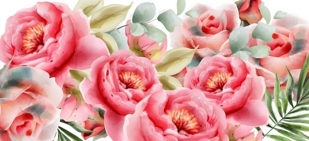ピンクの牡丹水彩夏の背景