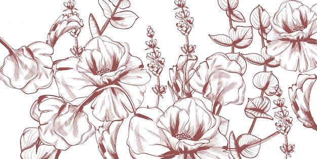 夏の花のラインアート。