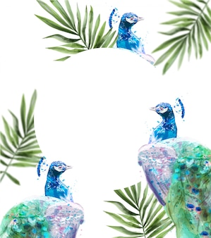 孔雀熱帯背景水彩画。夏のエキゾチックなカード