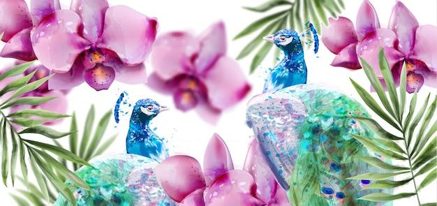 孔雀と蘭の花の水彩画