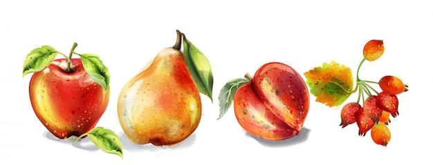 リンゴ、梨、桃の水彩セット。カラフルな果物の詳細な塗装スタイル