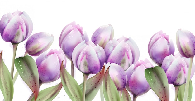 春のチューリップの花の水彩画