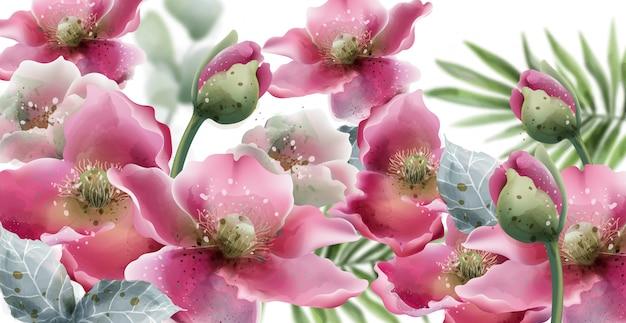 夏の花カード水彩画。