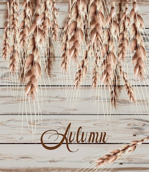 Колосья пшеницы осень осень карты. старинный деревенский плакат. деревянная текстура