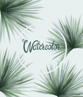 Акварель летом зеленые пальмовые листья