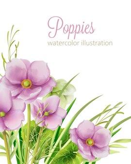 Акварельные фиолетовые маки цветы с листьями