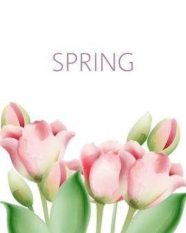 Акварельные цветы тюльпана с зелеными листьями и местом для текста
