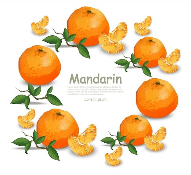 白い背景にオレンジの果物の花輪ラウンドフレーム