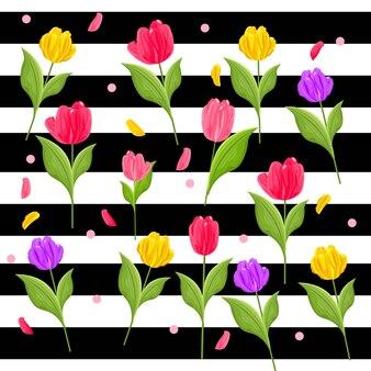 Красный, фиолетовый и желтый цвет тюльпанов