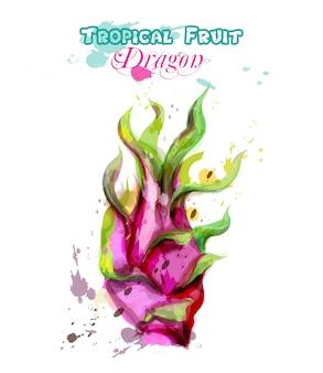 Драконья фруктовая акварель