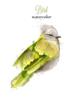 黄色の鳥の水彩