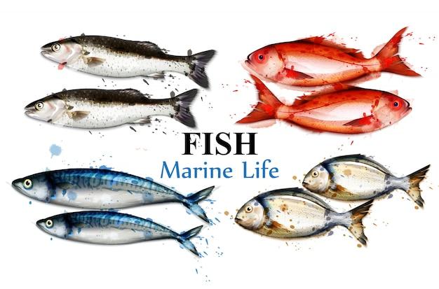 Акварельная разноцветная коллекция рыб