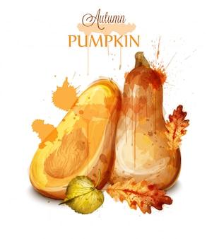 かぼちゃの水彩画