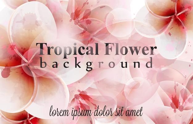 熱帯の花の水彩の背景