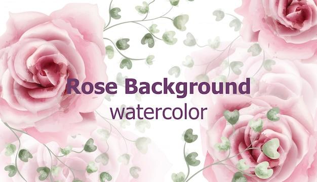バラの花の背景の水彩