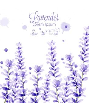 Акварельная открытка лаванда