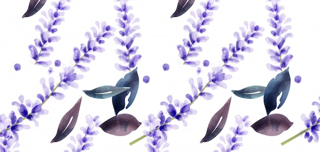 Акварельный рисунок лаванды