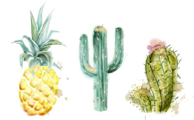 パイナップルとサボテンセット水彩画