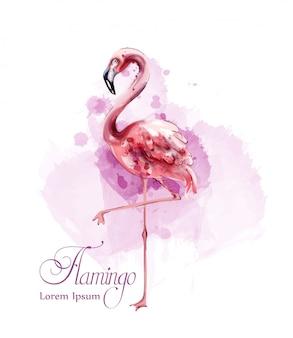 Фламинго акварель