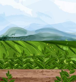 Зеленые поля акварельный фон