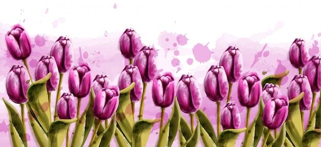ピンクのチューリップ春の背景の水彩画