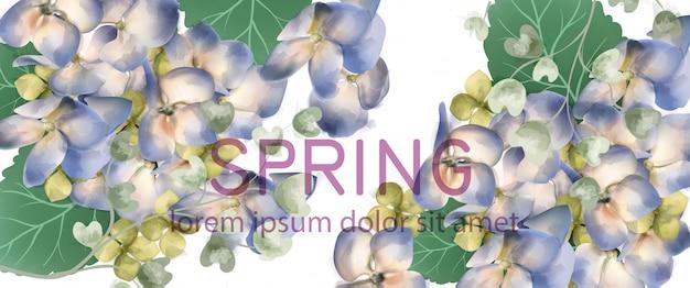 春のアジサイのバナーの水彩画