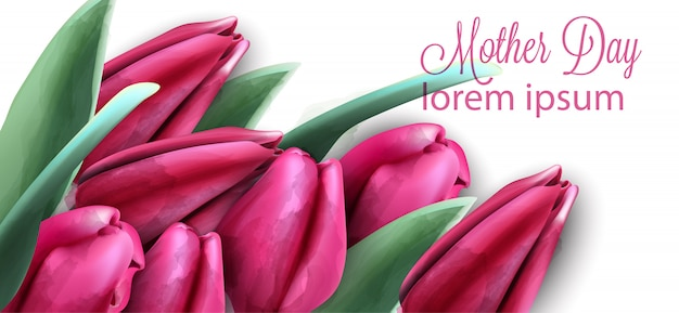 ピンクのチューリップの花バナー水彩画
