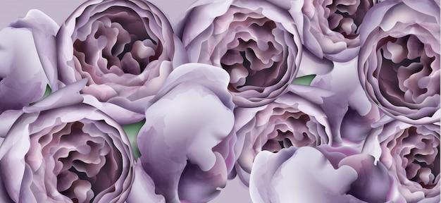 紫の牡丹の花の背景の水彩画