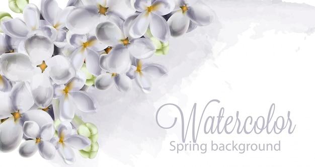 春のアジサイの花の水彩画