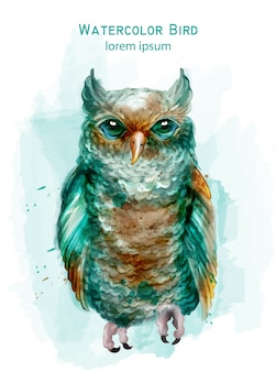 Синяя сова красочная акварель