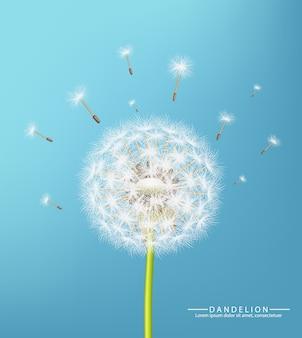 Реалистичный весенний цветок одуванчика