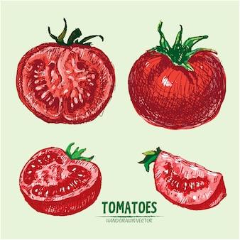 手描きのトマトの背景