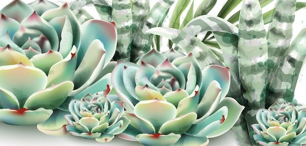 多肉植物とアロエベラの水彩画