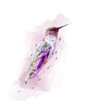 熱帯のカラフルな鳥の水彩画
