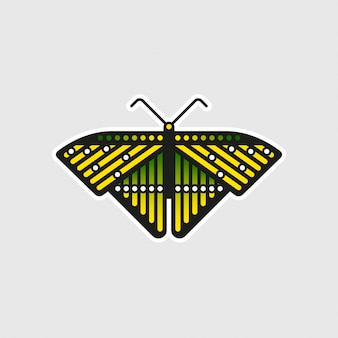 珍しい蝶のステッカー