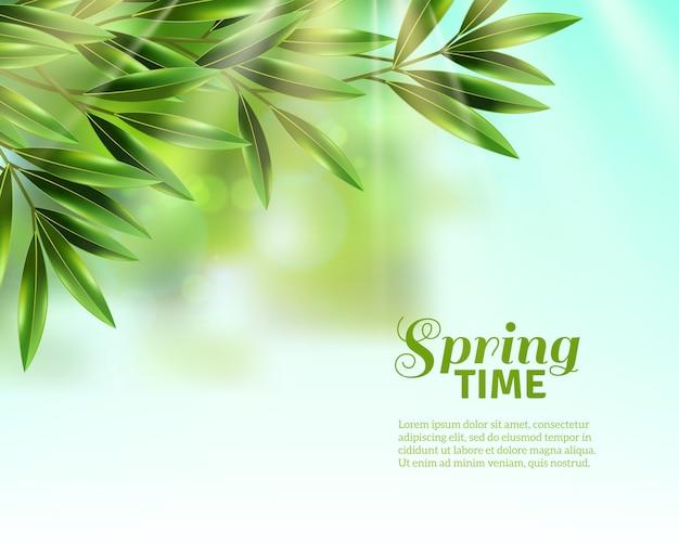 春の葉の背景