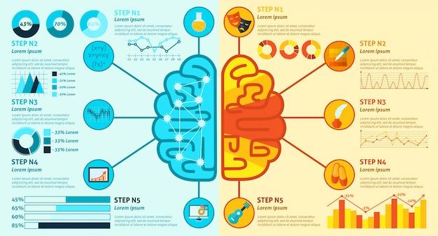 左右の脳のインフォグラフィック