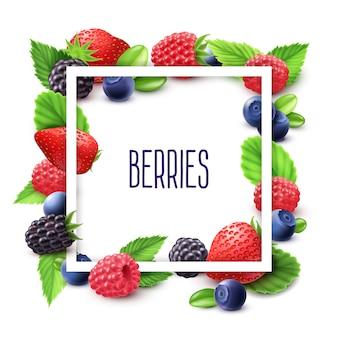 果実とフレームのリアルなセット