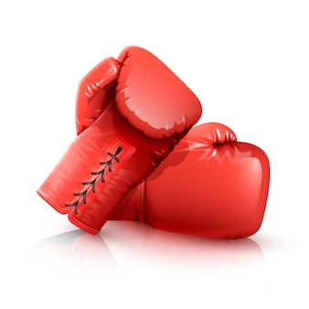 Боксерские перчатки реалистичные