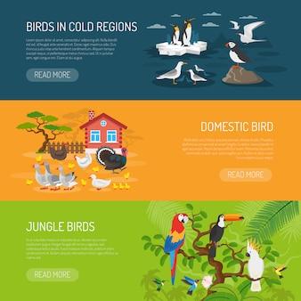 鳥の水平方向のバナーセット